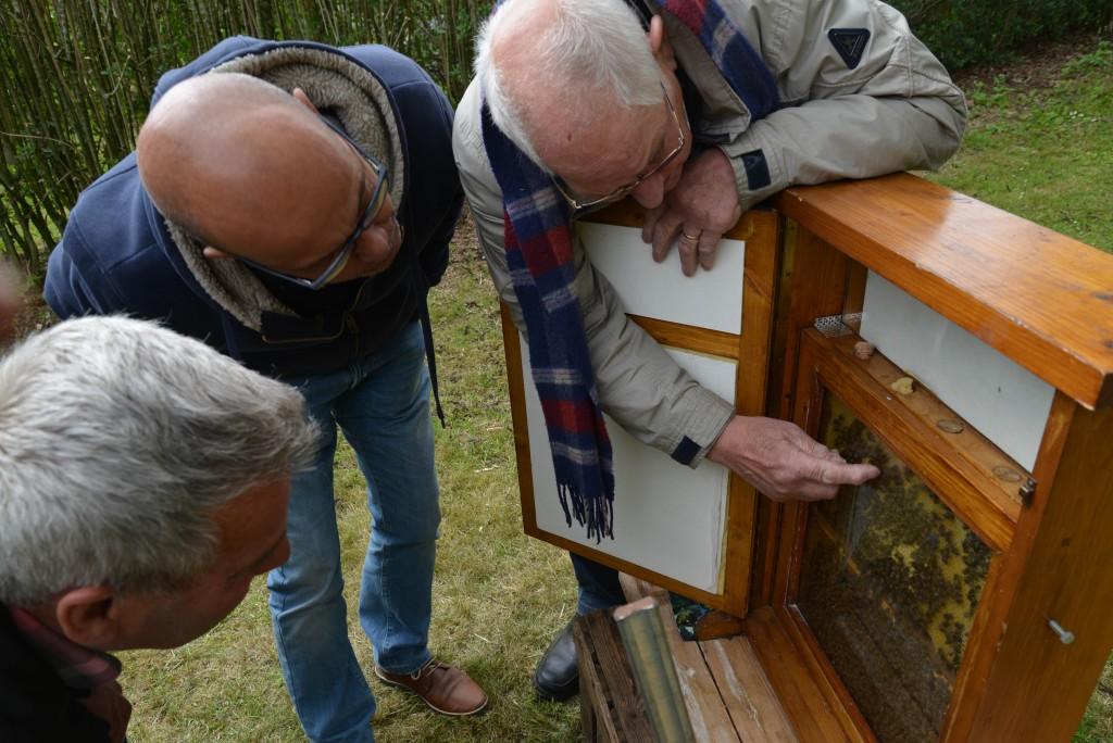 henk-de-koning-beleef-de-boerderij-capreton-16-05-2016 659